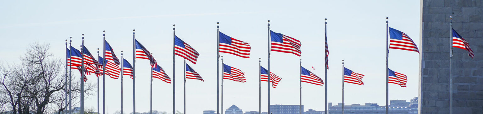 Picture of multiple American Flags